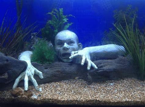 spongebob aquarium decoratie aquarium decoratie maakt of breekt je aquarium met tips