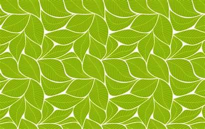 Pattern Leaf Leaves Clipart Jooinn Decorative