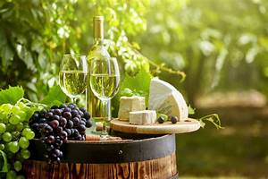 Savour Every Sip: Tips for a Successful Winery Tour in ...