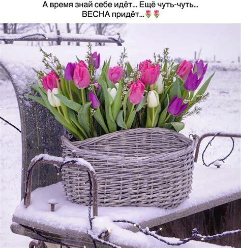 flowers wicker laundry basket spring  sprung