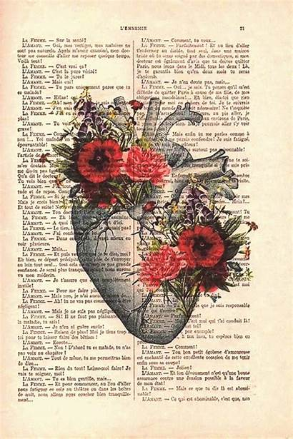 Anatomy Botanical Gothic Flower Human Drawing Poster