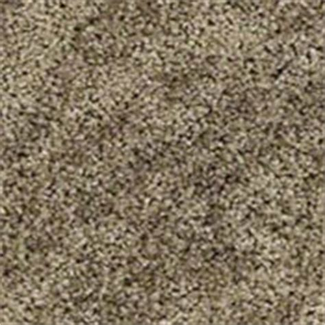 shaw flooring dealer login shaw originals carpet activate 00100 winter white images frompo