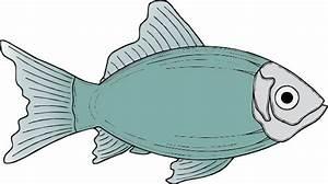Generic Fish clip art Free Vector / 4Vector