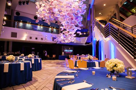 National Aquarium  Baltimore  Plan An Event. Etsy Record Wedding Invitations. Wedding Cakes Yorkshire. Wedding Show Jw Marriott. Best Online Wedding Ring Website. Wedding Invitation Makers Kent. Wedding Poems Einstein. Wedding Planning Cheap Ideas. Dream Wedding Theme Ideas