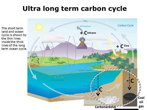 define the term carbon sink science