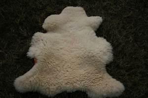 Peau De Mouton : la ferme d 39 emilie peaux de mouton agriculture biologique l 39 le d 39 yeu ~ Teatrodelosmanantiales.com Idées de Décoration