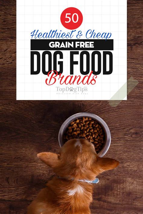 Top 50 Cheap Best Grain Free Dog Food Brands In 2019