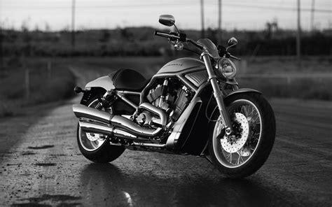 Harley Davidson Backgrounds by Best Desktop Hd Wallpaper Harley Davidson Wallpaper