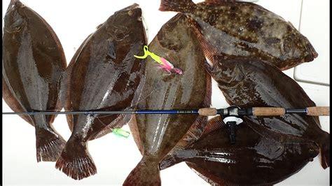 doormat flounder doormat fluke summer flounder slam