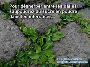 Comment Enlever Les Mauvaises Herbes : l 39 astuce naturelle pour d sherber entre les dalles du jardin ~ Melissatoandfro.com Idées de Décoration