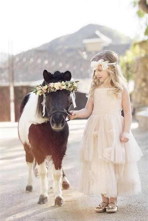 flower girl  miniature horse klk photography