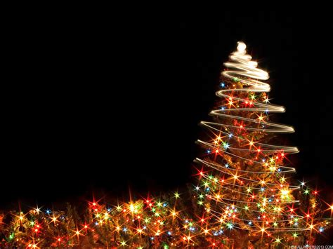 christmas tree sparkle wallpaper high definition