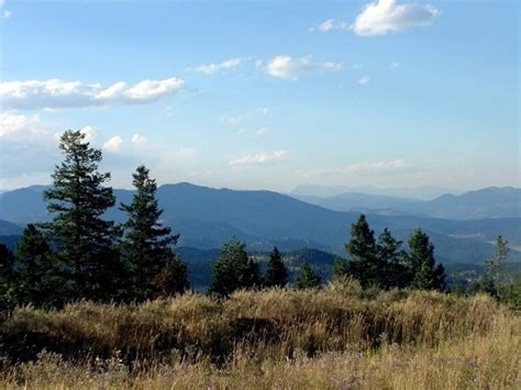 coloradorealestatehomesourcecom evergreen  homes