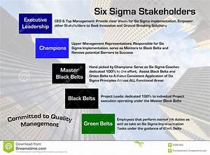 Six Sigma Stakeholders Diagram Stock Illustration
