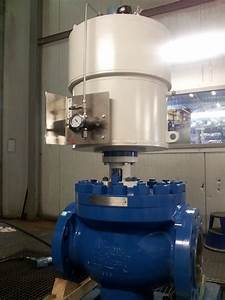 Axial Flow Valve  Afv  By Control Seal