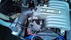 1975 Leo V8 Mercruiser 888 5 0 302 Efi Conversion Eec