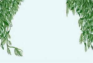 Hanging Jungle Vine Clipart - ClipartXtras