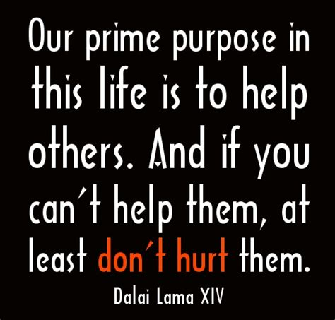 Prime Purpose In This Life Is To Help Others ~ Dalai Lama