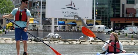 Swan Boats National Harbor by National Harbor Boathouse Kayaks Paddleboards Swan Boats