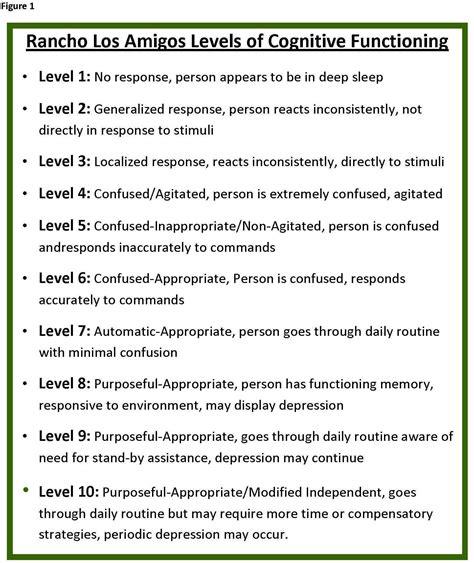 Modified Behavior Definition by Ranchos Los Amigos Scale Rancho Los Amigos Levels Of