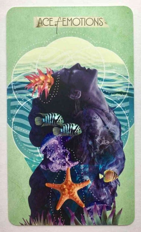Here comes the sun, pisces. What Tarot Cards Represent Pisces? - Vekke Sind