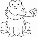 Frog Eating Fly Clipart Tree Transparent Eat Clip Template Tongue Outline Coloring Cartoon Cliparts Cummins Pluspng Animal Pintar Toad Dibujos sketch template