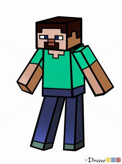 Minecraft Clipart Steve Draw Characters Drawing Drawings