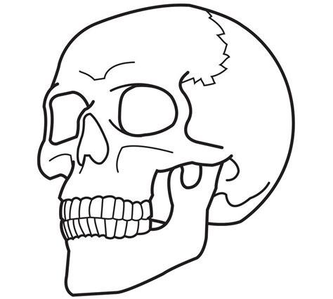 images  skulls   clip art  clip