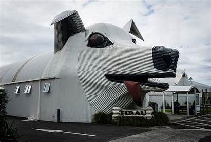 Tirau Dog Zealand Sheep Landmarks Buildings Nz