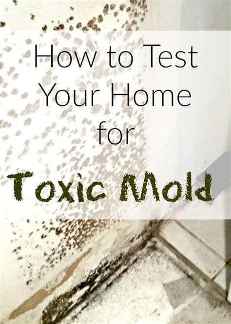wondering   test  home  mold