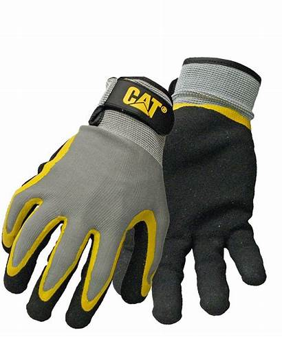 Gloves Cat Engineers Professionals Working