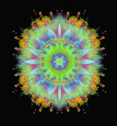 Trippy Psychedelic Dmt Gifs Animated Wifflegif Gifer