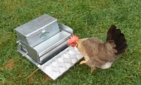 automatic chicken feeder 27 diy chicken feeder and waterer plans and ideas the