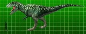Rei De Dinossauro  Carcharodontossauro