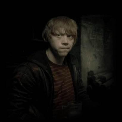 Ron Weasley Ronald Harry Potter Fanpop Droit