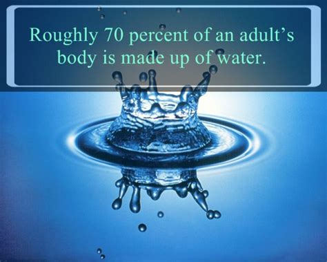 25 Must Know Interesting Facts About Water  The Wondrous. Top Psychology Schools In Florida. Fleet Management Software Freeware. Sharing Files In The Cloud Druid Tree Service. Master In Human Resource Management. Free Online Point Of Sale System. Affordable Auto Insurance Augusta Ga. Kaplan College Indianapolis In. What Are The Different Forms Of Energy