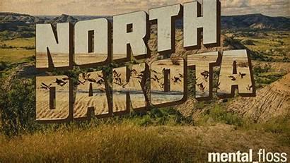 Dakota North Facts Impressive Shape Effron Chloe