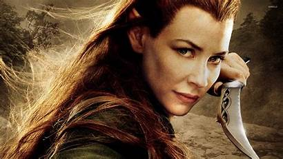 Hobbit Tauriel Smaug Desolation Lilly Evangeline Wallpapers