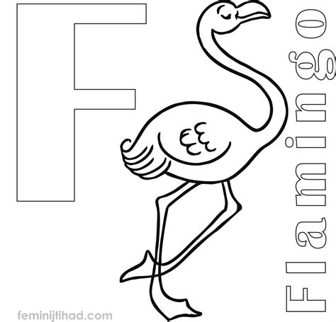flamingo coloring page cool coloring pages flamingo coloring pages