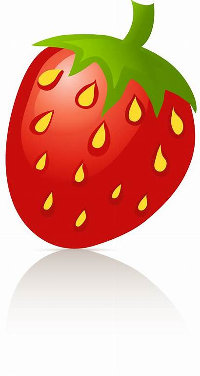 Clipart Strawberry Transparent Sigel Clip Erdbeere Cliparts