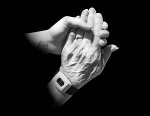 Free Images : hand, woman, photography, trunk, old ...