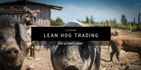 Lean Hogs: Learn How To Trade at Commodity.com
