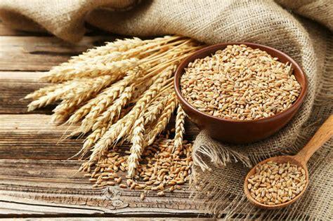 home floor planner facts on wheat allergies unlock food