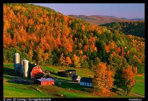 Vermont Fall Foliage Farm