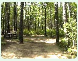 Campground Sites at Stadig Campground Wells Maine, Camping ...
