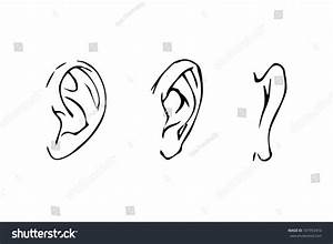 Line Drawing Human Ear Side View Stock Vector 181953410 ...