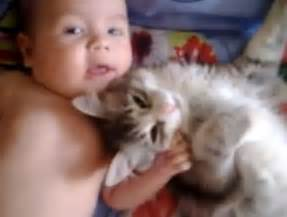 babies and cats cat is completely and utterly in with baby