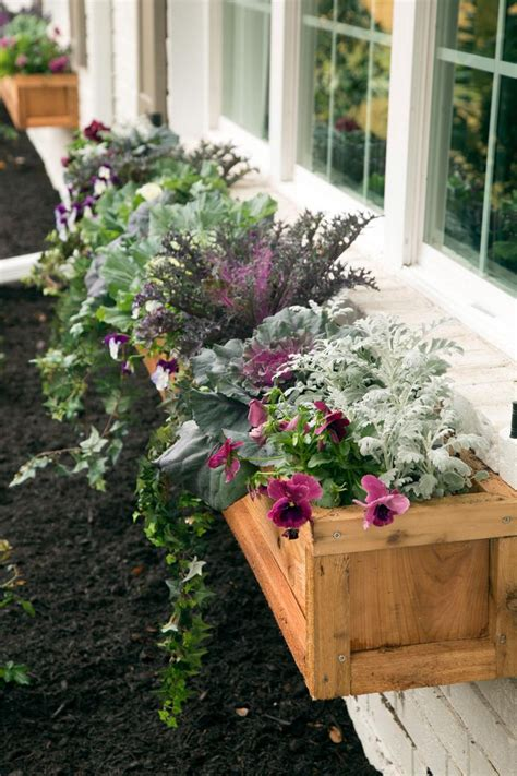 best 25 flower boxes ideas on window boxes