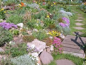 Pflanzen Für Steingarten : welche steingarten pflanzen ~ Michelbontemps.com Haus und Dekorationen