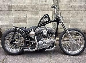 Rigid Evo Sportster 1200cc Harleydavidson Custom Short